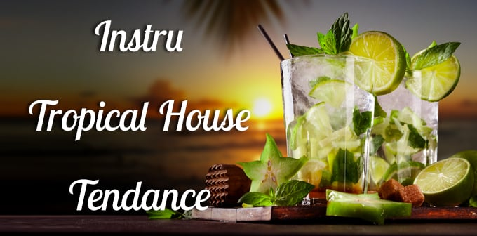 Instru Tropical House Tendance